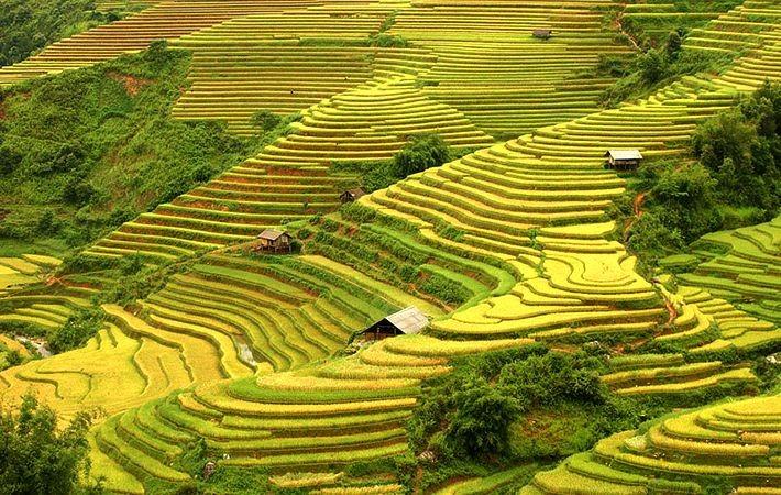Pesawahan terasering di kabupaten Mu Cang Chai-Keindahan  megah di daerah  pegunungan Tay Bac - ảnh 3