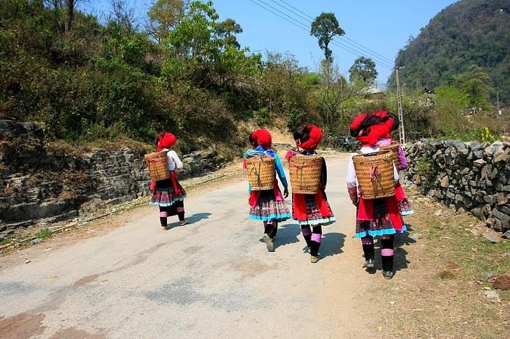 Daerah dataran tinggi Sin Ho: Keindahan yang masih liar di daerah pegunungan dan hutan Tay Bac - ảnh 4