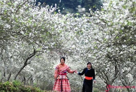 Pesta-pesta budaya yang khas di provinsi Lai Chau - ảnh 1