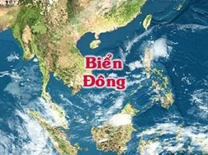Komunitas Orang Vietnam di Eropa menyampaikan petisi kepada Kanselir Jerman  supaya membawa  masalah Laut Timur pada KTT G20 - ảnh 1