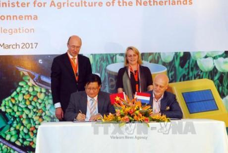 Penanggulangan perubahan iklim dan kerjasama pertanian: Bidang kerjasama efektif antara Vietnam-Belanda - ảnh 1