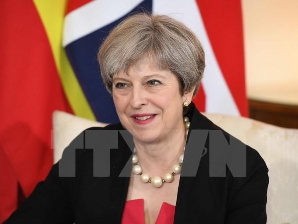 Masalah Brexit: PM Theresa May berseru supaya menghentikan kontradiksi dalam internal Partai Konservatif - ảnh 1