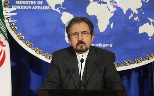 Iran menolak pernyataan Liga Arab - ảnh 1