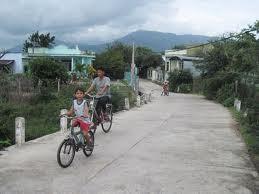 新農村作りに向けて発展する協同組合 - ảnh 1