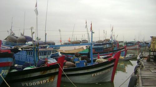 中部各島、台風ウトアへの対応準備 - ảnh 1