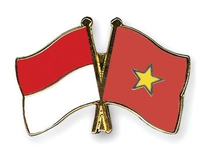 ベトナムインドネシアの文化芸術交流会 - ảnh 1