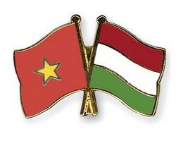 ベトナム・ハンガリー外交関係樹立65周年 - ảnh 1