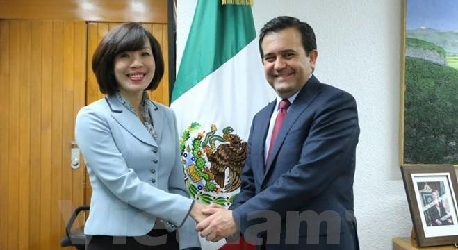 メキシコ経済大臣、ベトナム大使と会見 - ảnh 1