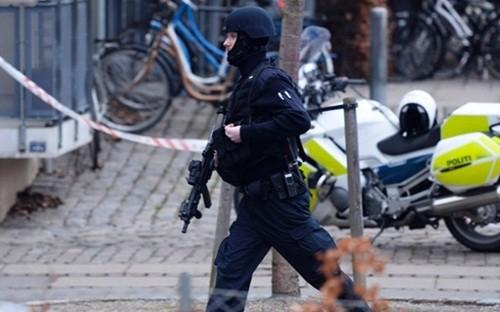 欧州首脳ら「テロとの闘い」で連携  - ảnh 1