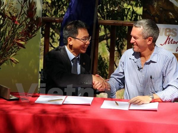 越豪両国、洞窟観光協力を強化 - ảnh 1