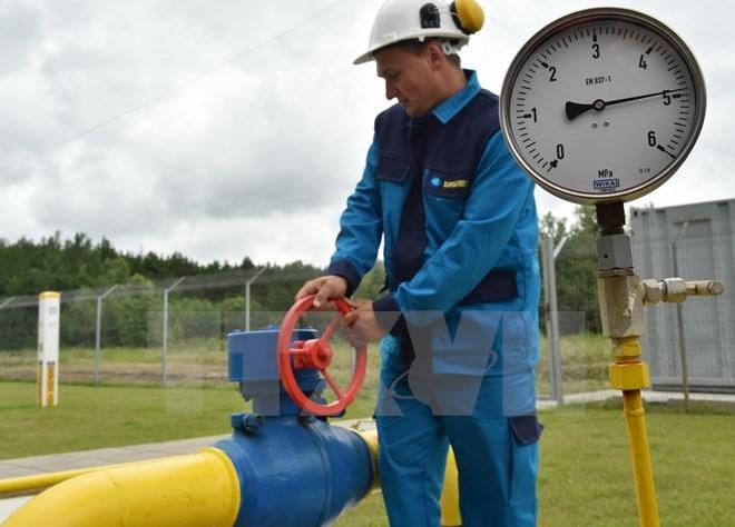 ガス3者会談の開催提案 EUがロシアとウクライナに - ảnh 1