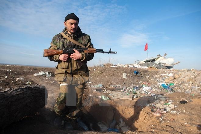 ウクライナ東部で交戦 OSCE確認、停戦違反か - ảnh 1