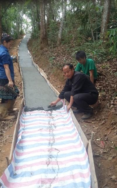 農村部のために奮闘する村の若い副委員長パオさん - ảnh 2