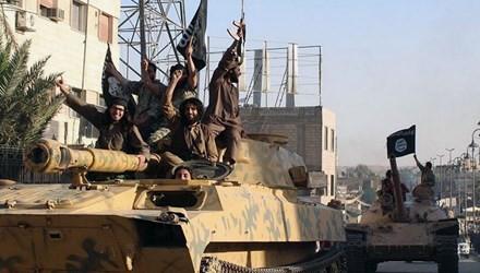 米当局、ISへの参加計画の若者6人を逮捕 - ảnh 1