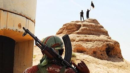 IS、シリア軍戦闘機を撃墜 - ảnh 1