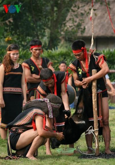 バナ族の平安を祈る儀式 - ảnh 6