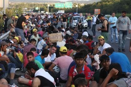 欧州諸国、難民を受け入れる方針 - ảnh 1