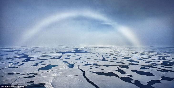 北極圏進出の競争 - ảnh 1