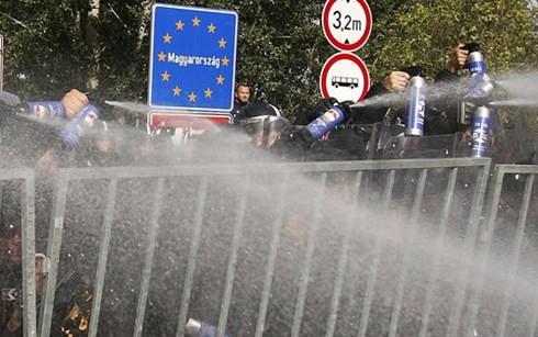 ハンガリー 国境の管理強化で混乱続く - ảnh 1