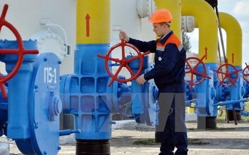 ロシア・EU・ウクライナ、ガス供給で合意 - ảnh 1