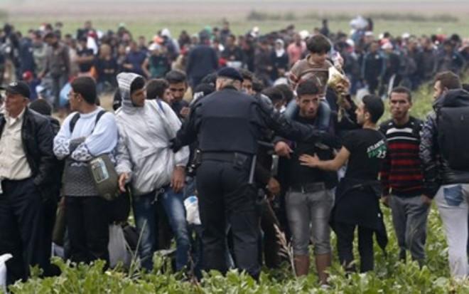セルビアとクロアチア、難民問題で不一致 - ảnh 1