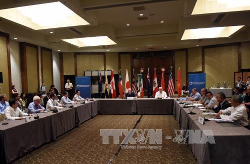 TPP主席会合始まる - ảnh 1