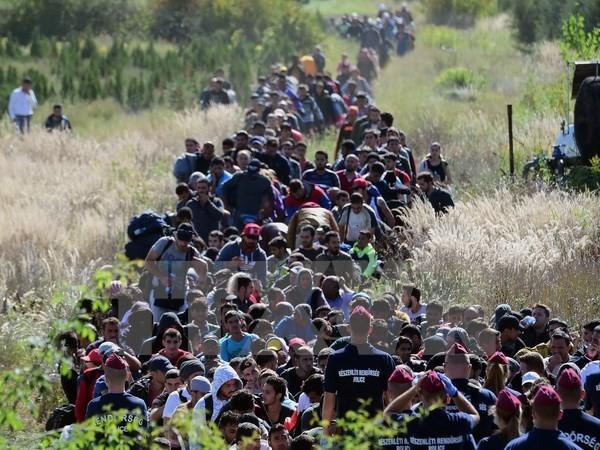 EU、難民流入71万人に=9カ月間で過去最多 - ảnh 1