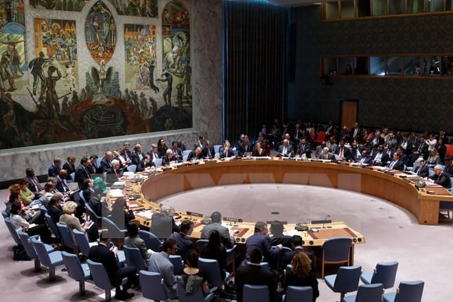 国連安保理 イスラエルとパレスチナが非難応酬 - ảnh 1
