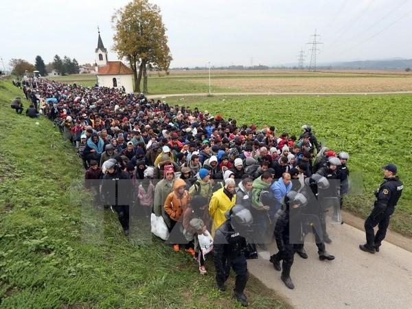 難民申請の規則を強化、1週間前倒しで ドイツ - ảnh 1