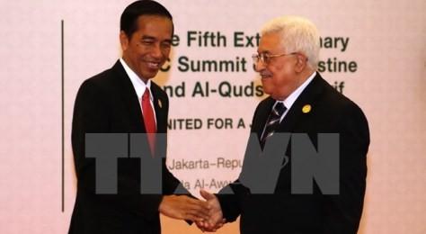 イラン外相が、OICの臨時首脳会合でパレスチナの人々の権利回復を要請 - ảnh 1