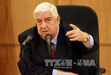 シリア外相「和平協議で大統領の処遇議論せず」 - ảnh 1