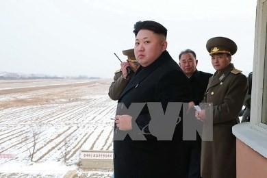 米 朝鮮制裁決議実施へ新たな大統領令 - ảnh 1