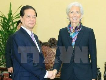 IMF、ベトナムとの協力を強化 - ảnh 1