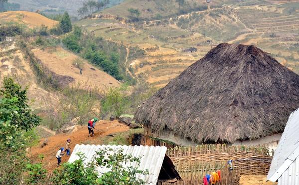 少数民族の人々の農業生産活動 - ảnh 11
