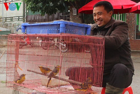 イェンフック鳥市場(1) - ảnh 2