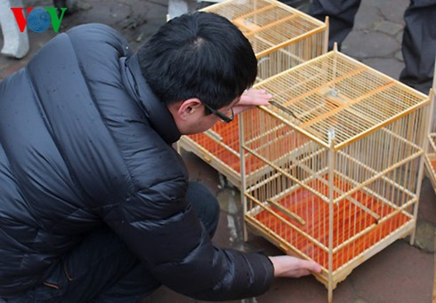 イェンフック鳥市場(1) - ảnh 7