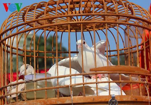 イェンフック鳥市場(1) - ảnh 3