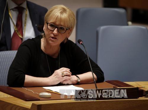 国連安保理、テロとの戦いの重要性を再確認 - ảnh 1