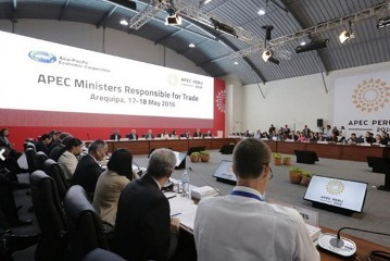 APEC貿易担当相会合ペルーで開幕 - ảnh 1