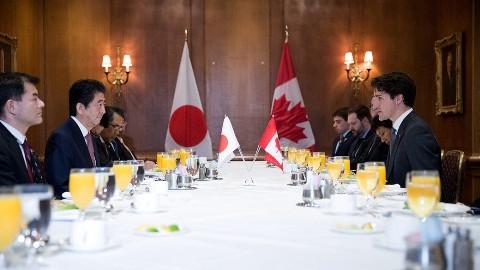 安倍首相、カナダ・トルドー首相と会談 サミット成功へ協力確認 - ảnh 1