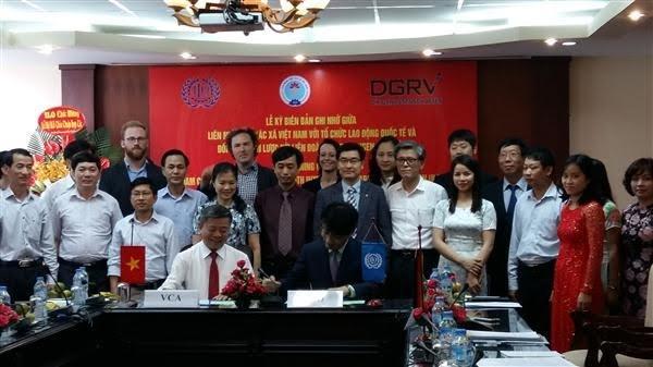 ILOなど、ベトナム協同組合連盟を支援 - ảnh 1
