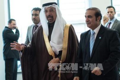 OPEC 原油減産で最終合意 減産は8年ぶり - ảnh 1