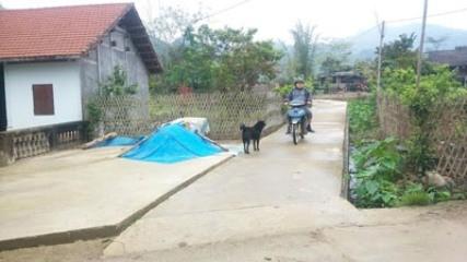 バックカン省における新農村作り - ảnh 1