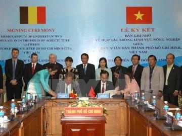 ベルギーのフランダース・ブリュッセル地方 ベトナムとの投資関係を強化 - ảnh 1