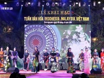 マレーシア・インドネシア・ベトナム文化ウィーク、始まる - ảnh 1