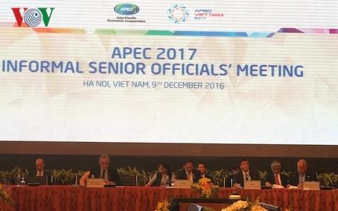 APECのISOM非公式高級実務者会合 開催 - ảnh 1