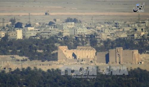 シリア古代都市パルミラ、ISが再び制圧 遺跡破壊の危機 - ảnh 1