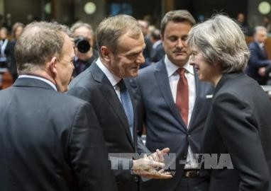 EU27カ国首脳、ブレグジット交渉で結束を確認 - ảnh 1