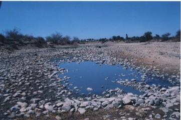 ニントアン省における気候変動の対応 - ảnh 1