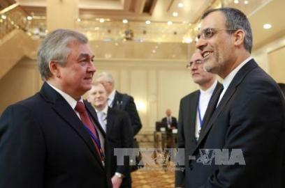 シリア停戦維持、ロシア・トルコ・イランで共同声明 - ảnh 1